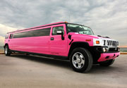New Orleans Pink Limos