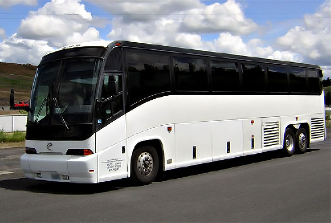 Palm Beach 45 Passenger Party Bus